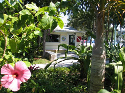 Since 1978, DIVE ABACO! has been at the Conch Inn Resort & Marina, Marsh Harbour, Abaco, Bahamas.